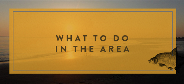 What to do in The Kinmel Arms area