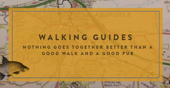 walking-guides-button