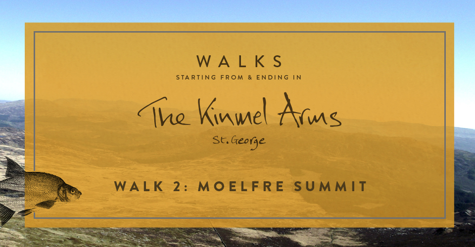 The Kinmel Arms walk to Moelfre Summit