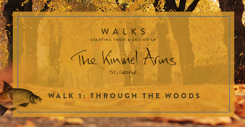 Country walks from The Kinmel Arms